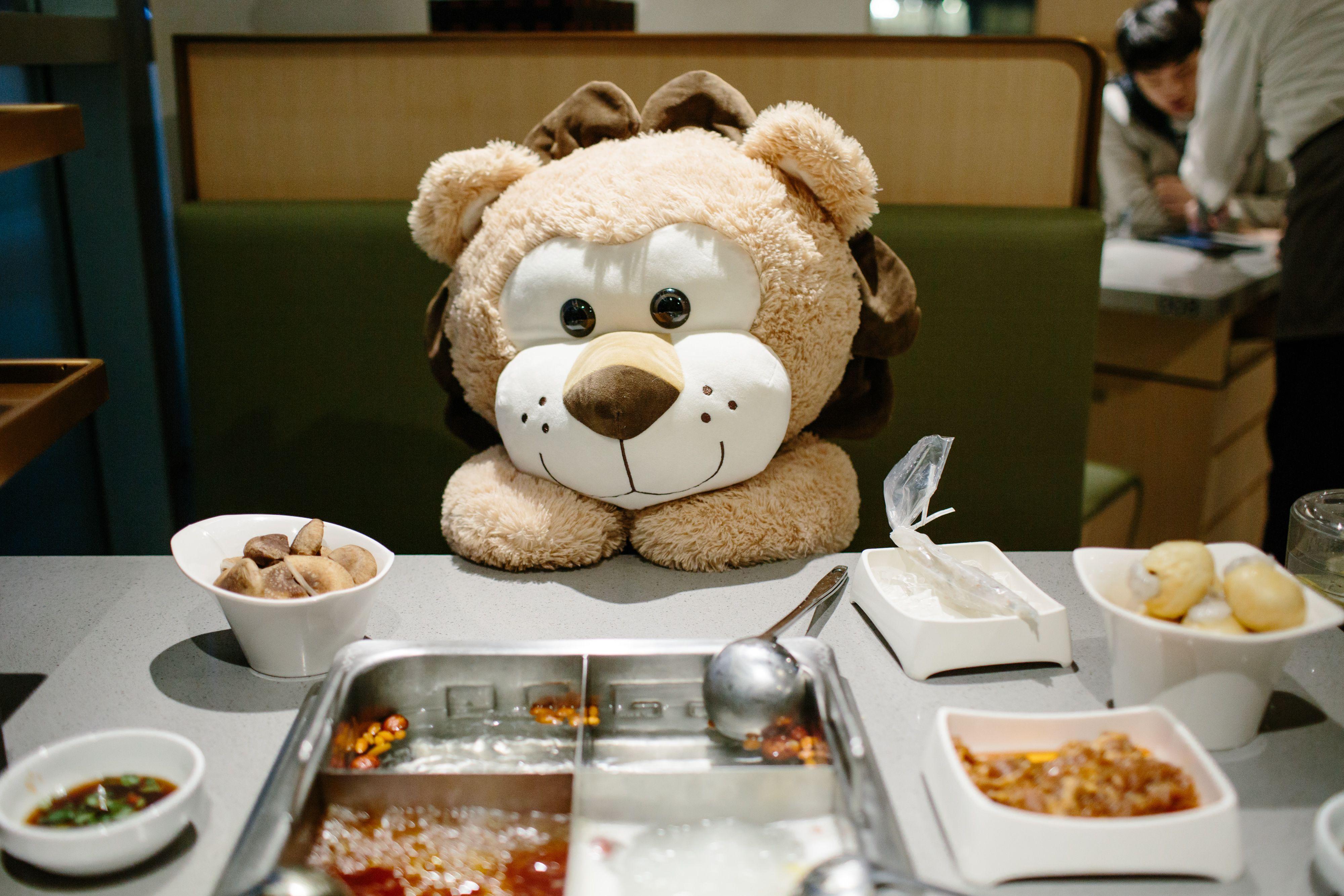 haidilao-free-teddy-bear